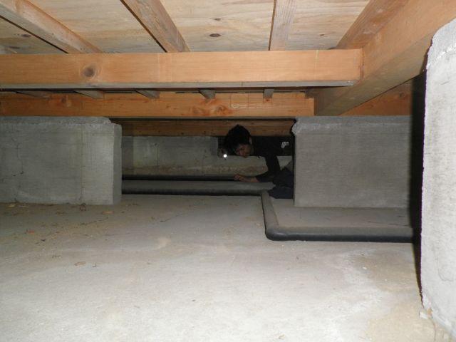 床下にも潜入し出来得る限り、悪臭を追跡