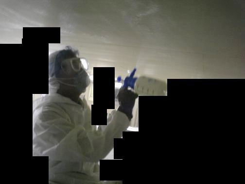 除カビ剤/防カビ剤 噴霧及び塗布
