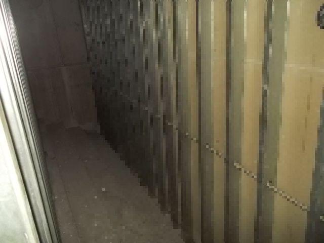 壁の裏の異臭発生源